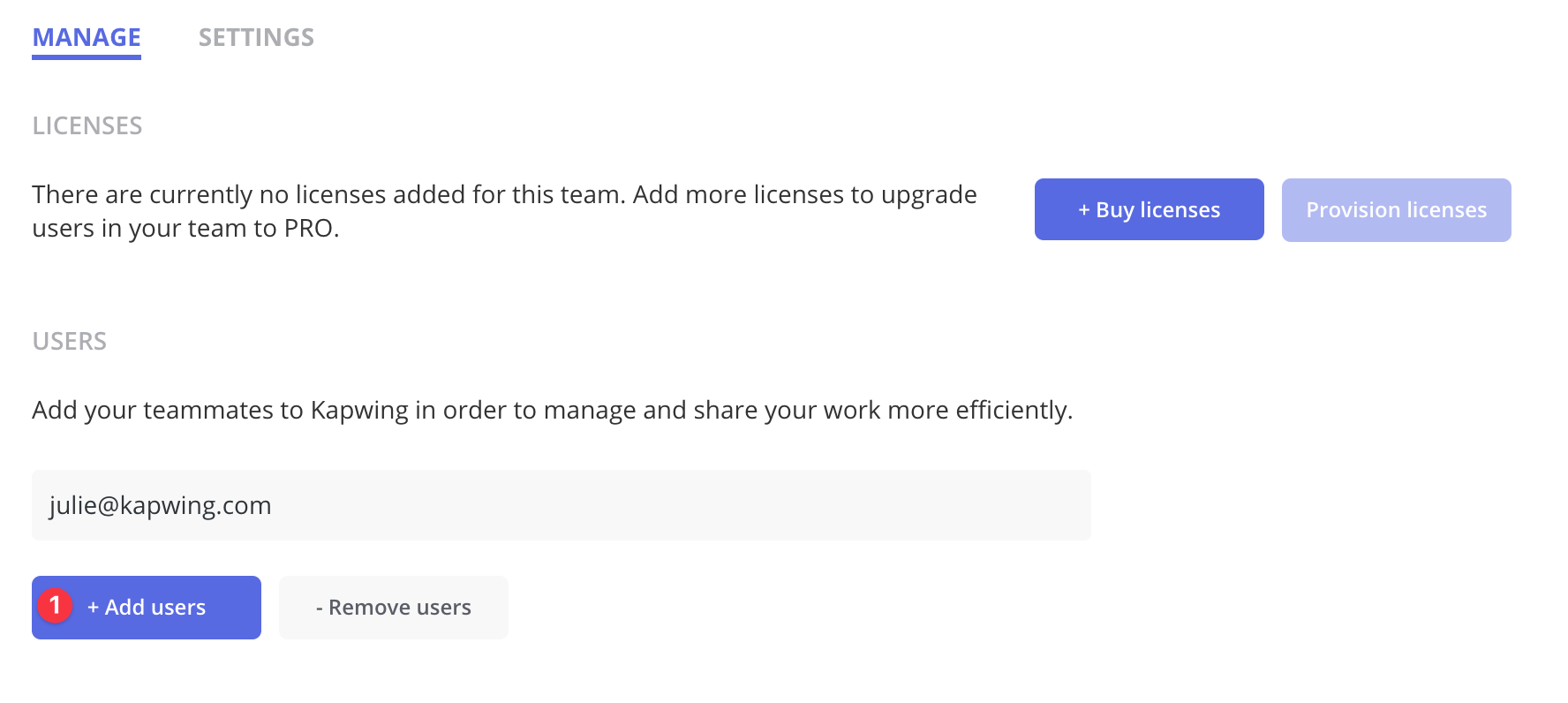 The Team view allows you to Manage the team by adding users, purchasing licenses and updating Team settings.