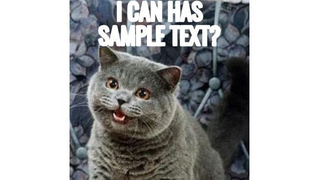 The original cat meme, Happy Cat.