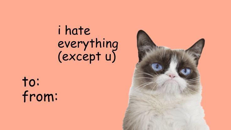 grumpy cat valentines meme