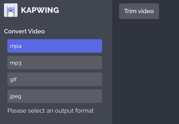 A screenshot from the Kapwing video converter, showing the available file types.