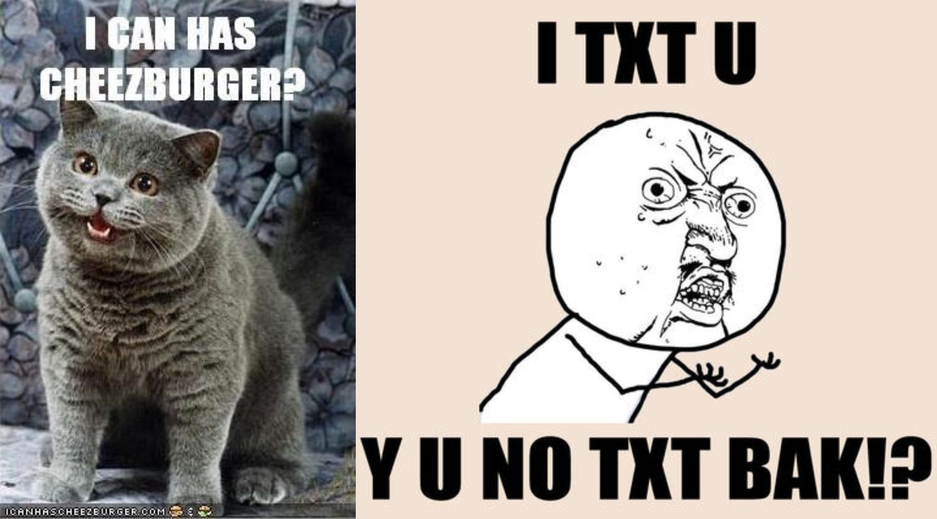 """Two memes representative of the early 2000's, one with Happy Cat and one with """"Y U NO"""" Guy."""