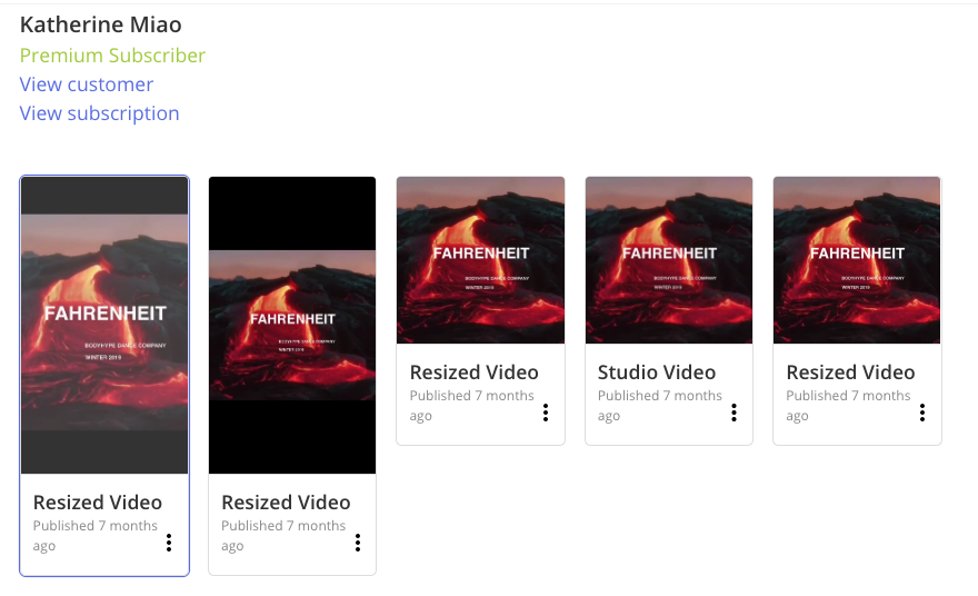 """A screenshot of a Kapwing workspace with several files named """"Resized Video""""."""