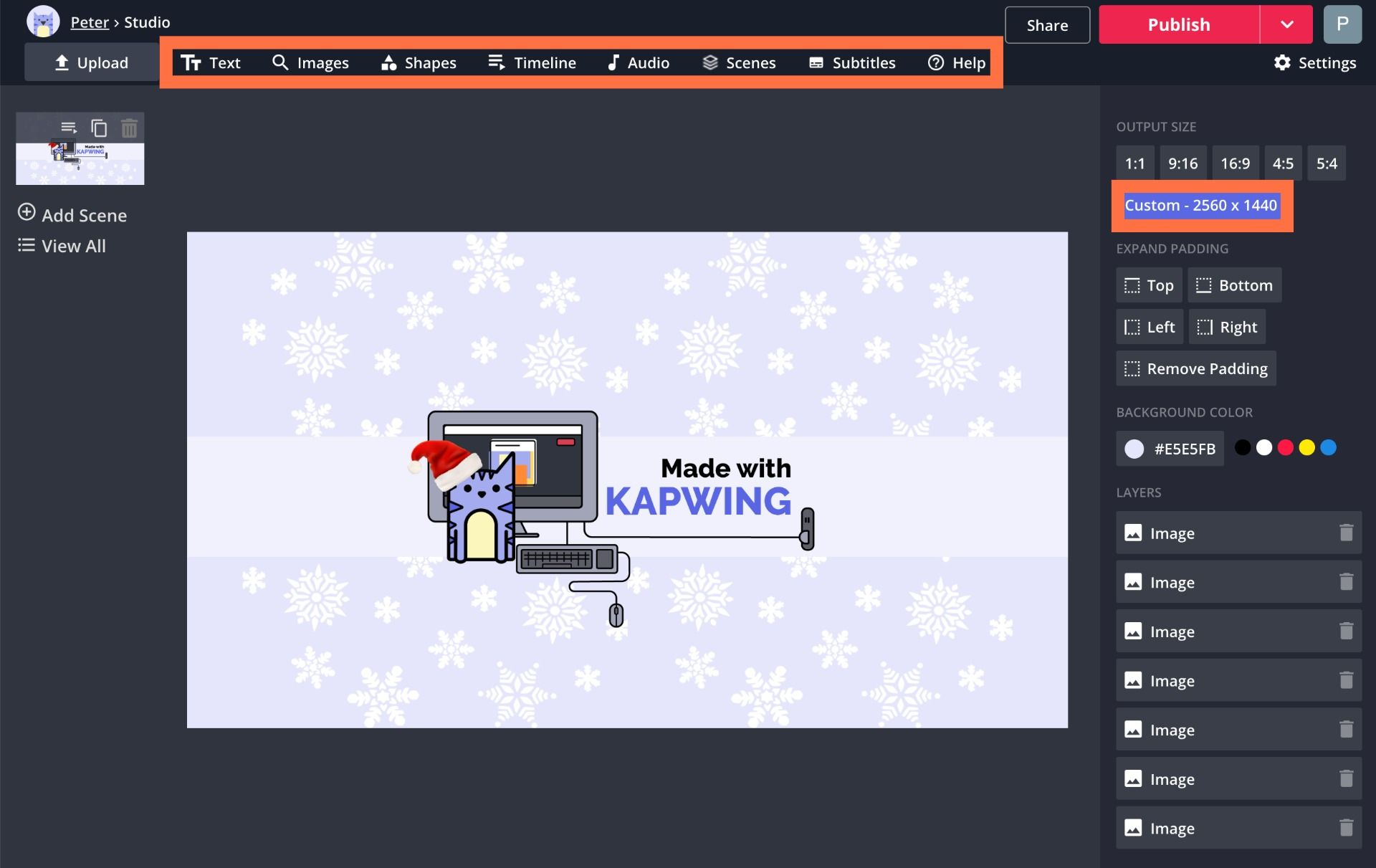A screenshot of the Kapwing Studio, pointing out image editing options.