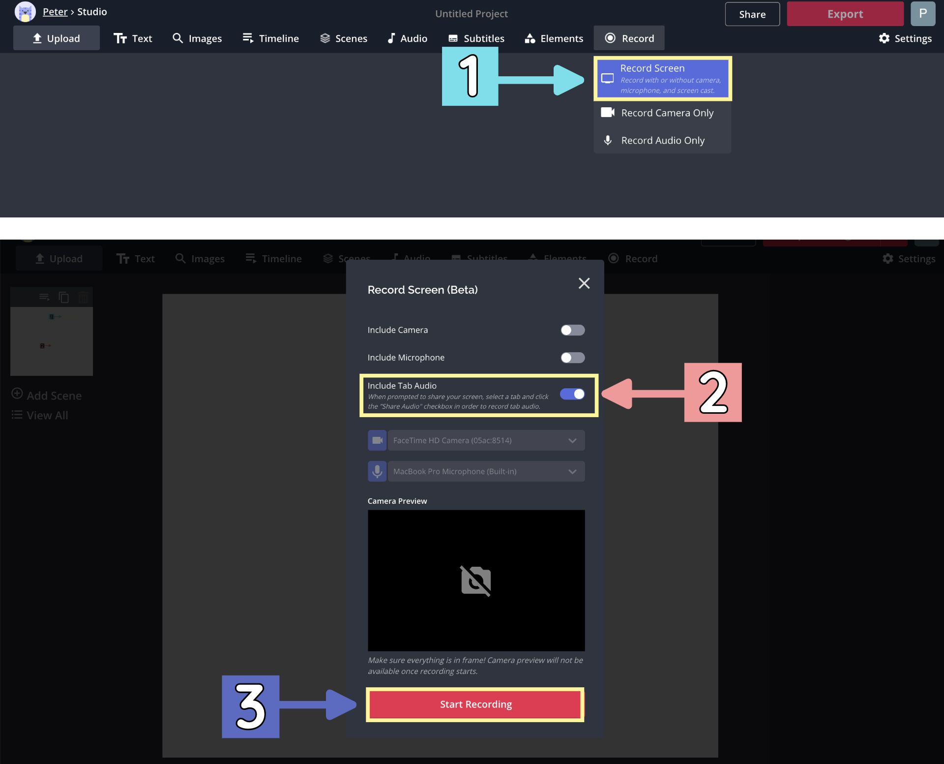 A screenshot from the Kapwing Studio, showing how to record system audio from your browser.