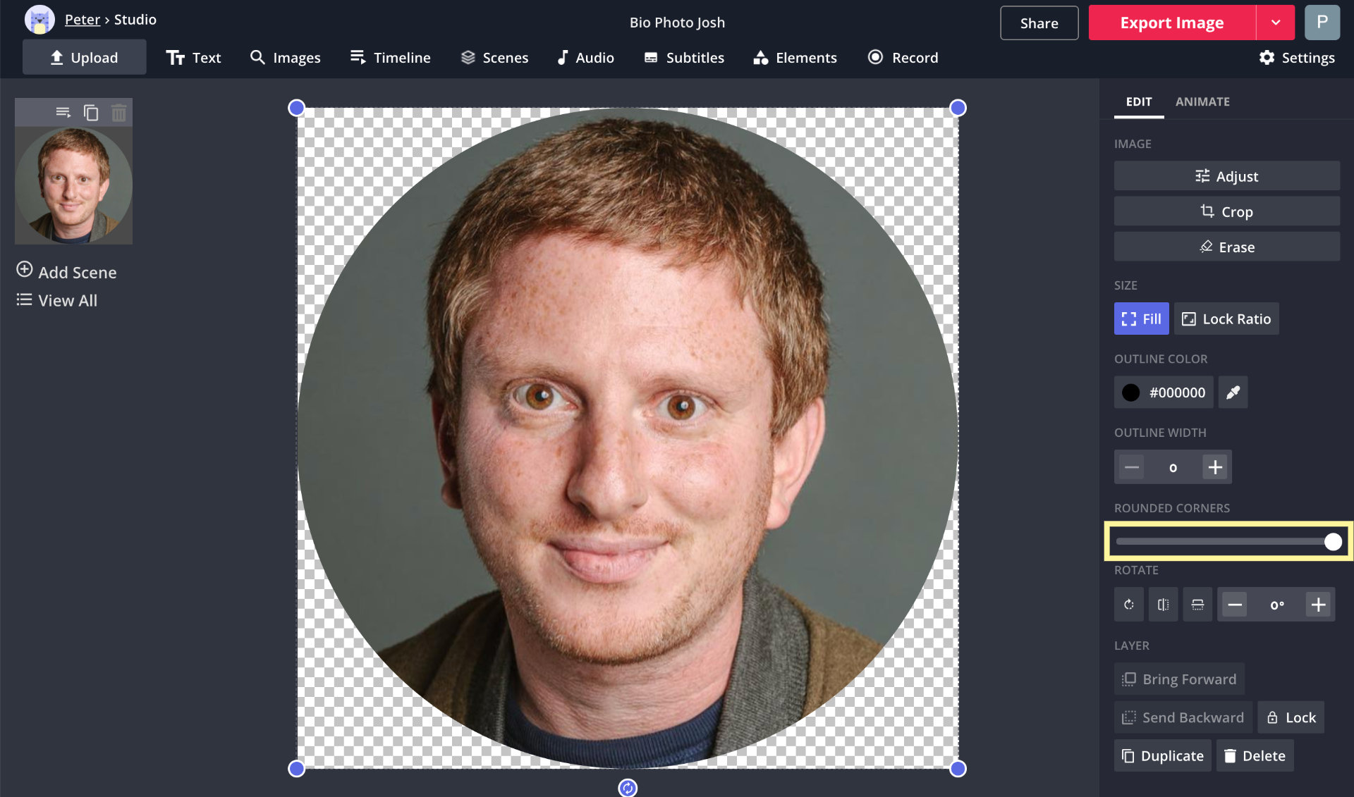 A screenshot of a bio photo being cropped to a circle in the Kapwing Studio.
