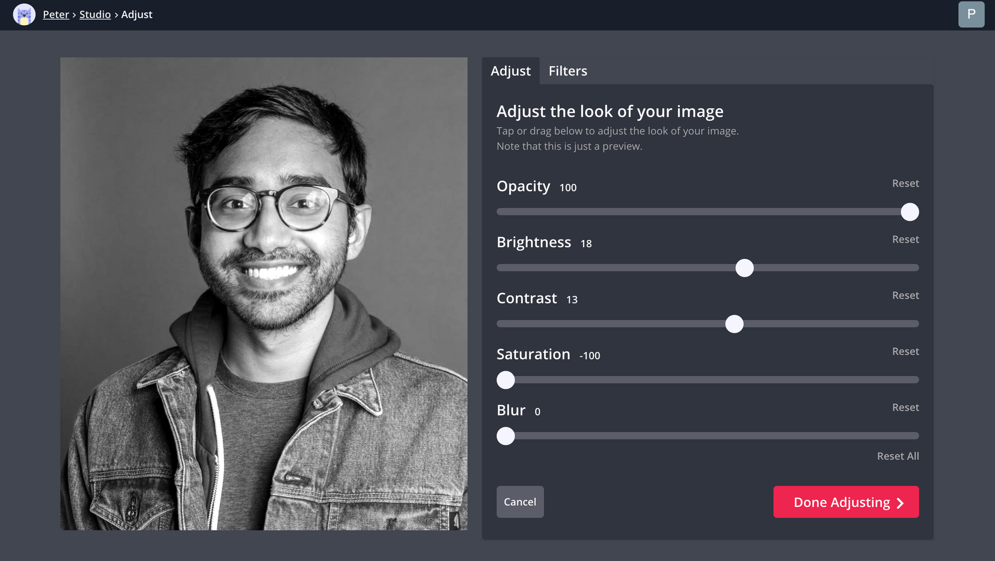 A screenshot of a bio photo being turned to black and white in the Kapwing Studio.