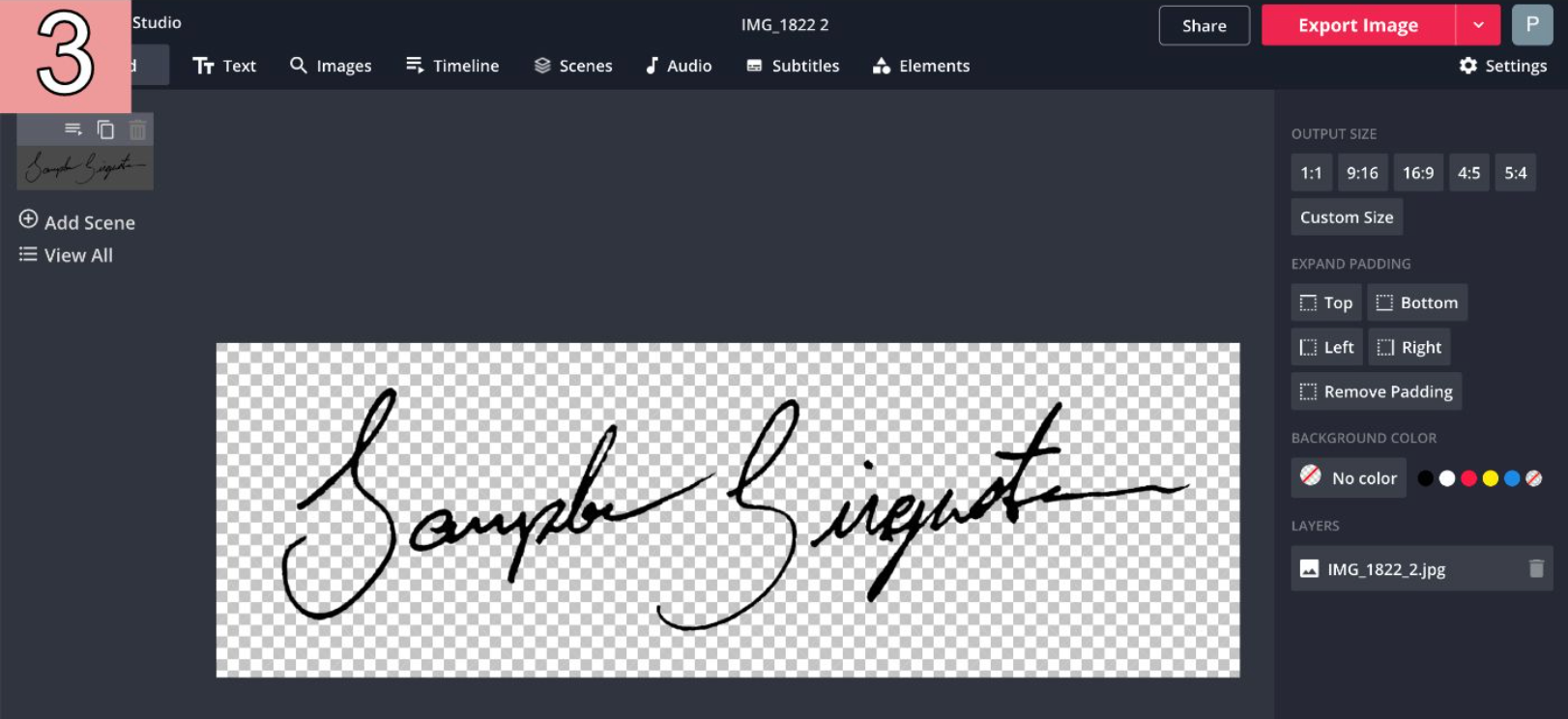 A screenshot of an erased signature image with high contrast in the Kapwing Studio.