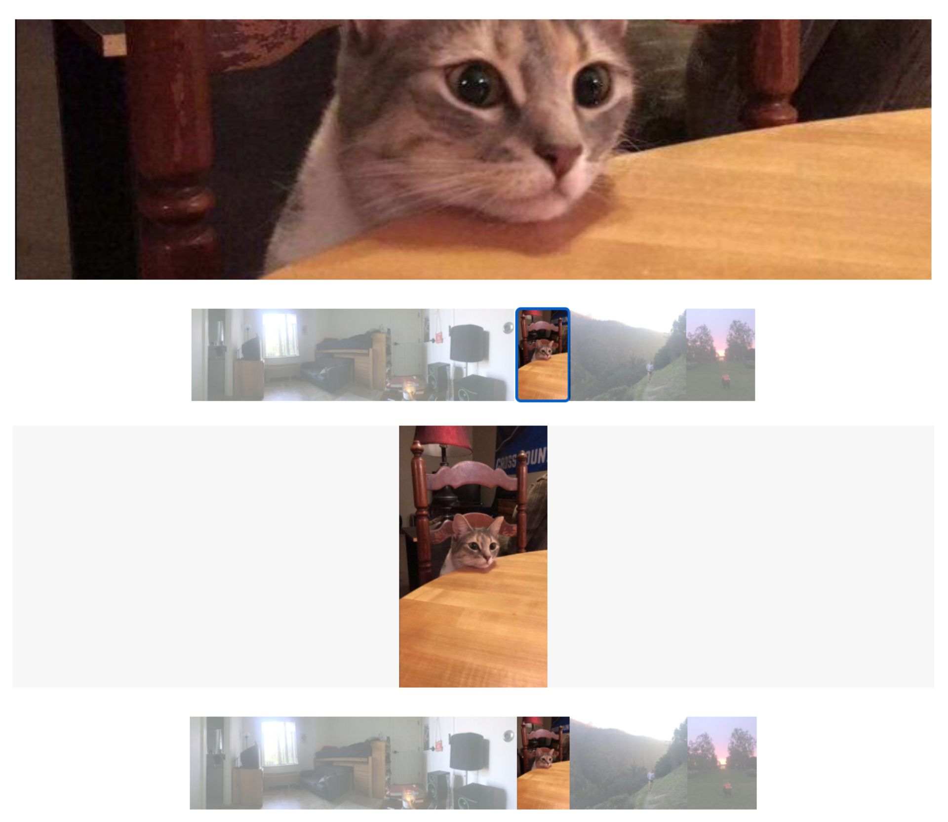 Screenshots showing how images are cropped or reduced in size when displayed in Squarespace's Slideshow block.