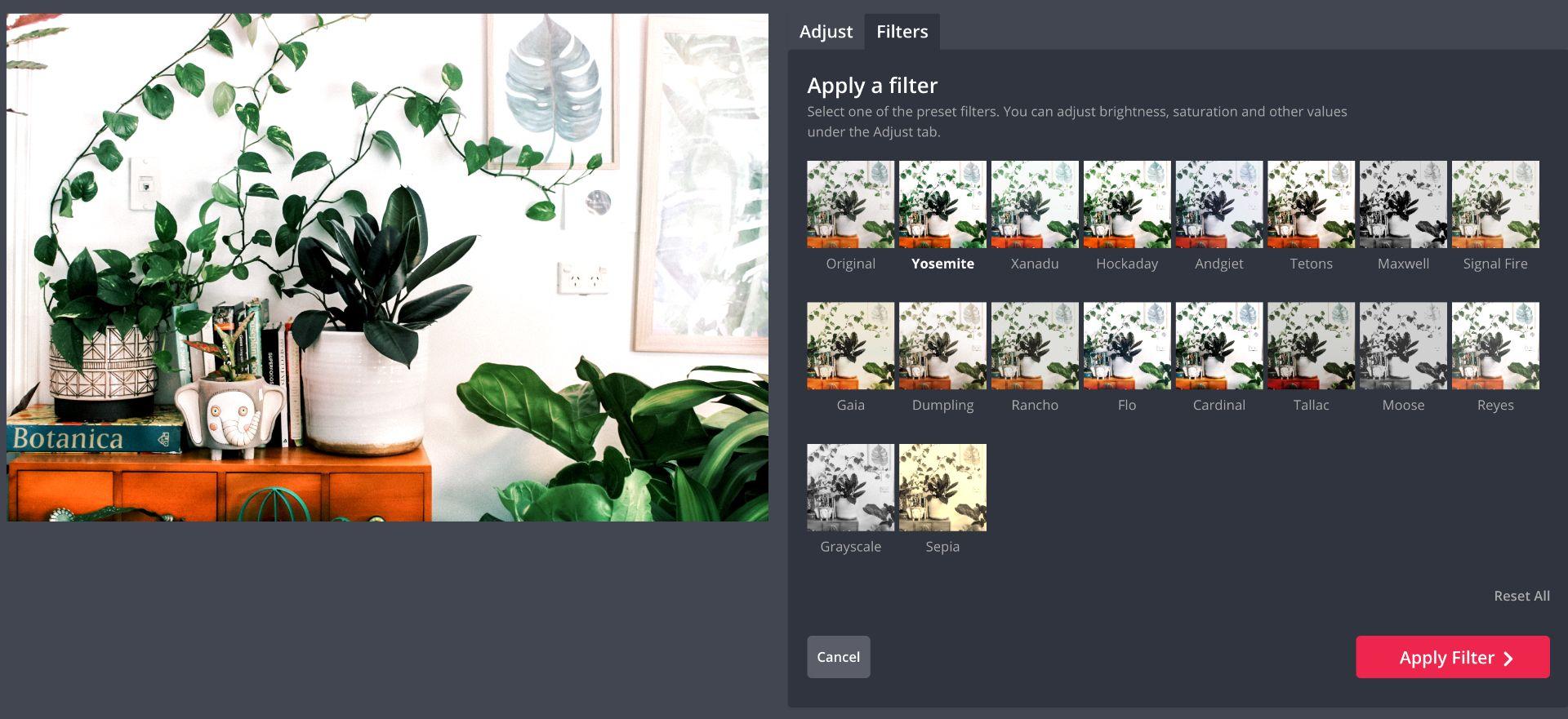 screenshot of filters in Kapwing