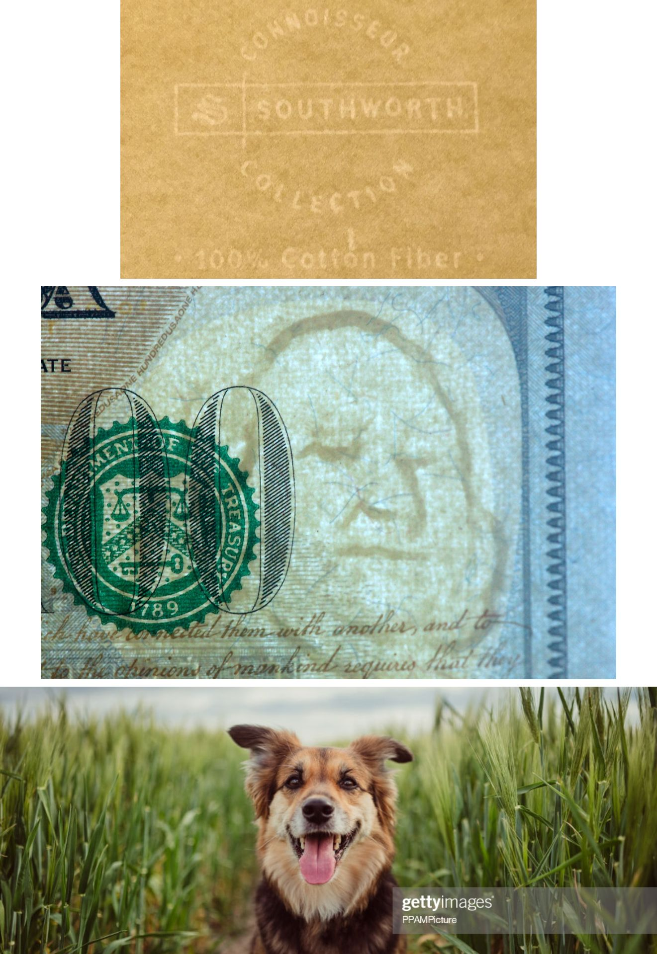 Examples of 3 different types of watermark: one on stationery, one on money, and one on a stock photo.