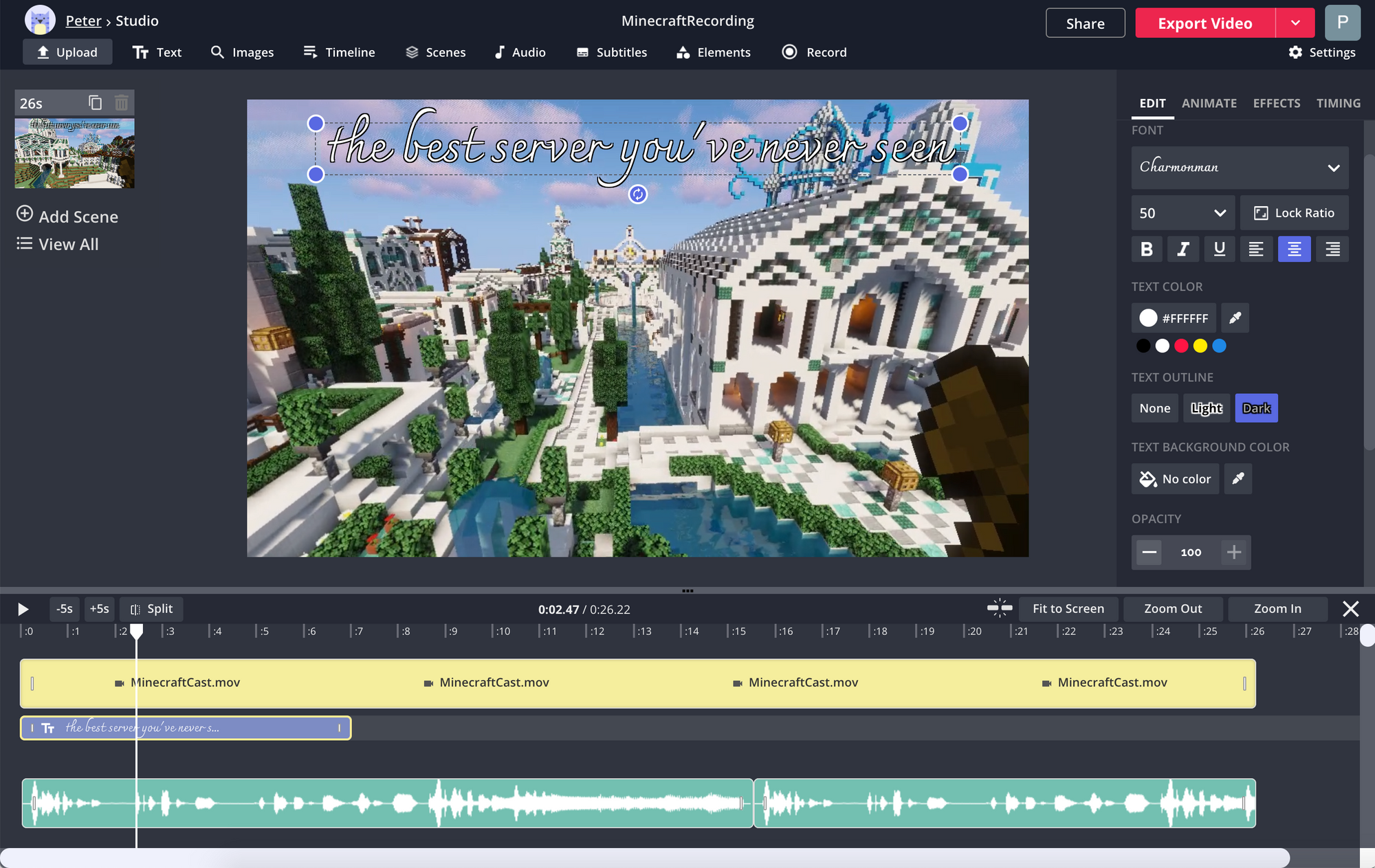 A screenshot showing the video editing options in the Kapwing Studio.