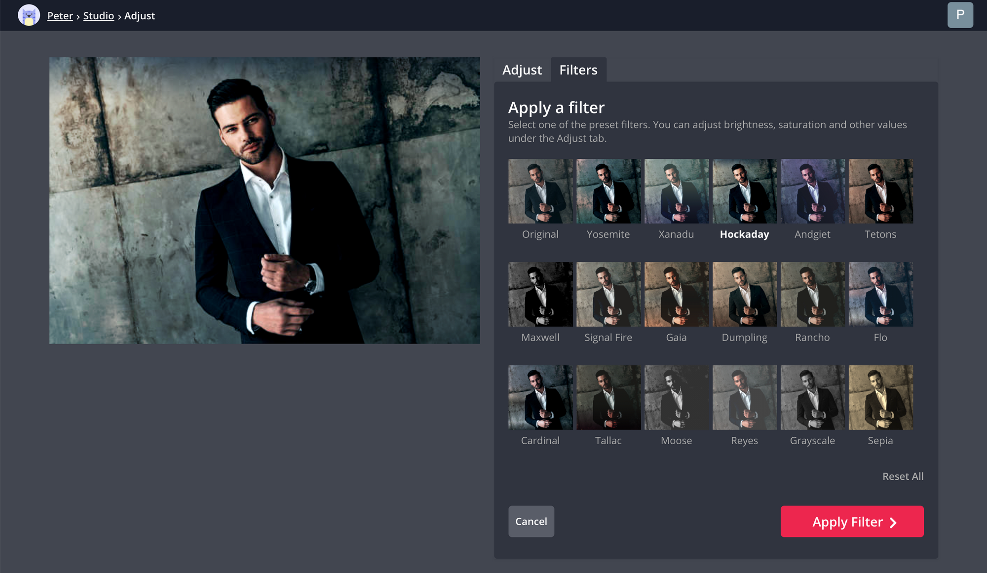 A screenshot showing how to add filters to images in the Kapwing Studio.