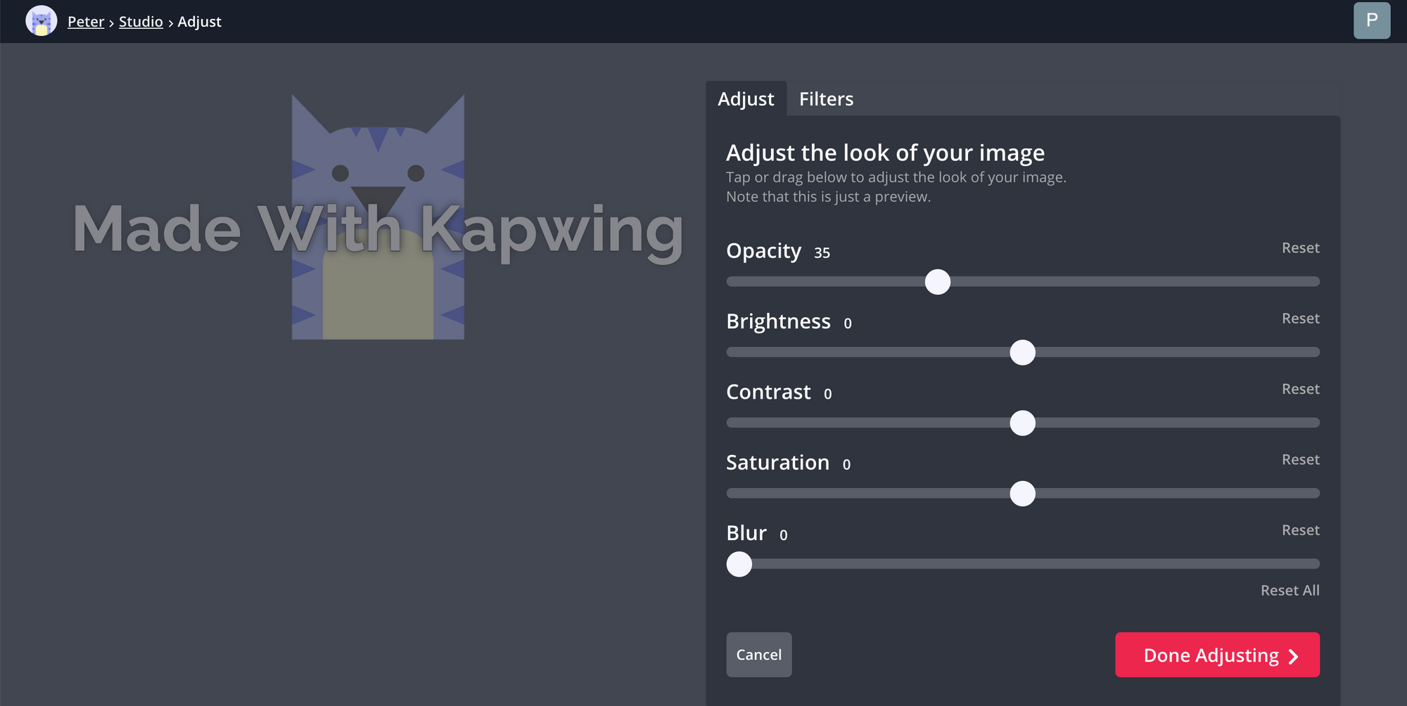 A screenshot demonstrating how to lower the opacity of an image in the Kapwing Studio.
