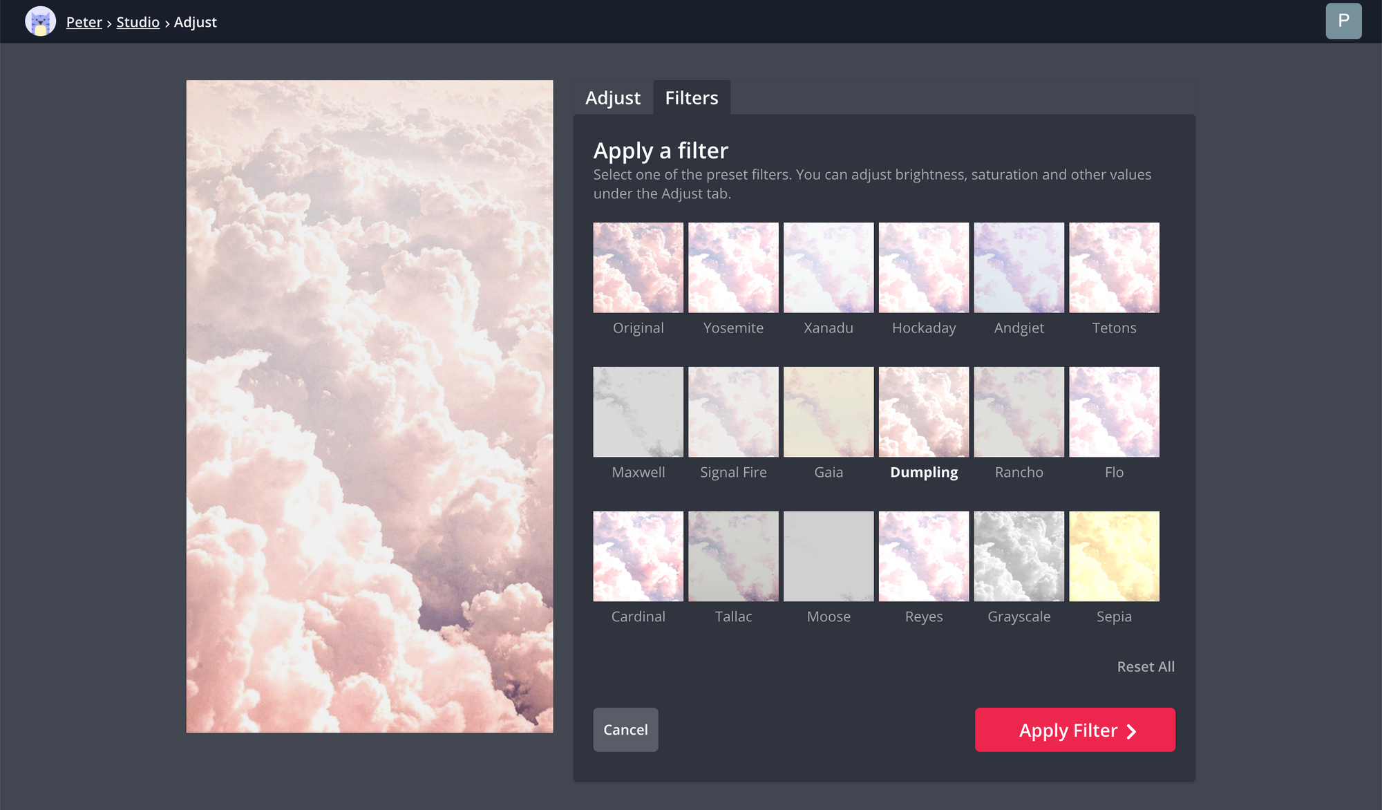A screenshot of the Kapwing Studio's filter options.