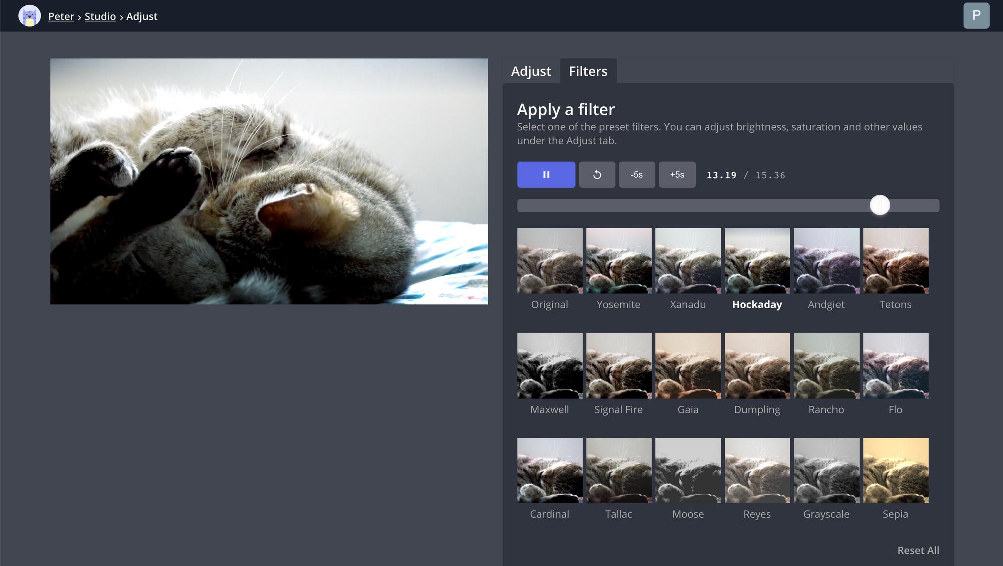 A screenshot of Kapwing's Filters tool.