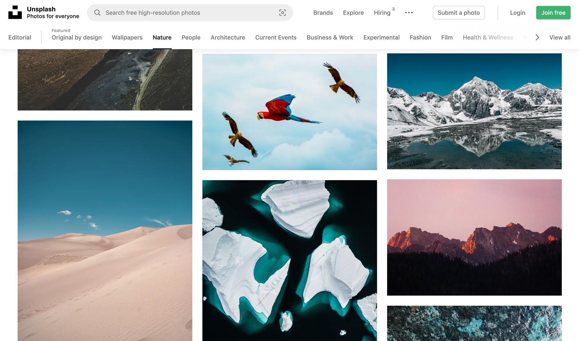 A screenshot of Unsplash search results.