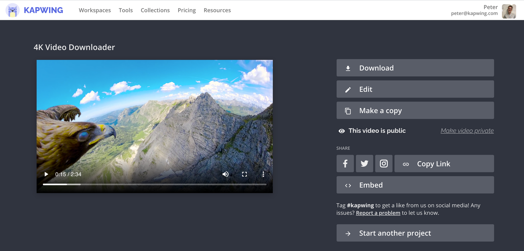 A screenshot of the Kapwing 4K video downloader page.