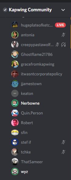 The voice chat for one of our game nights