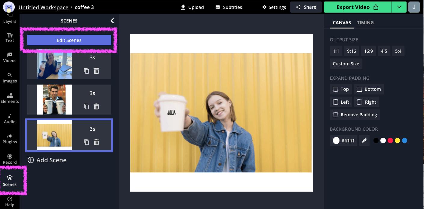 Edit Scenes button