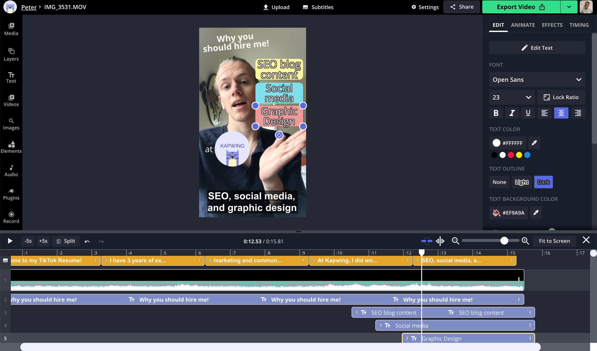 A screenshot showing the editing options for TikTok videos in the Kapwing Studio.