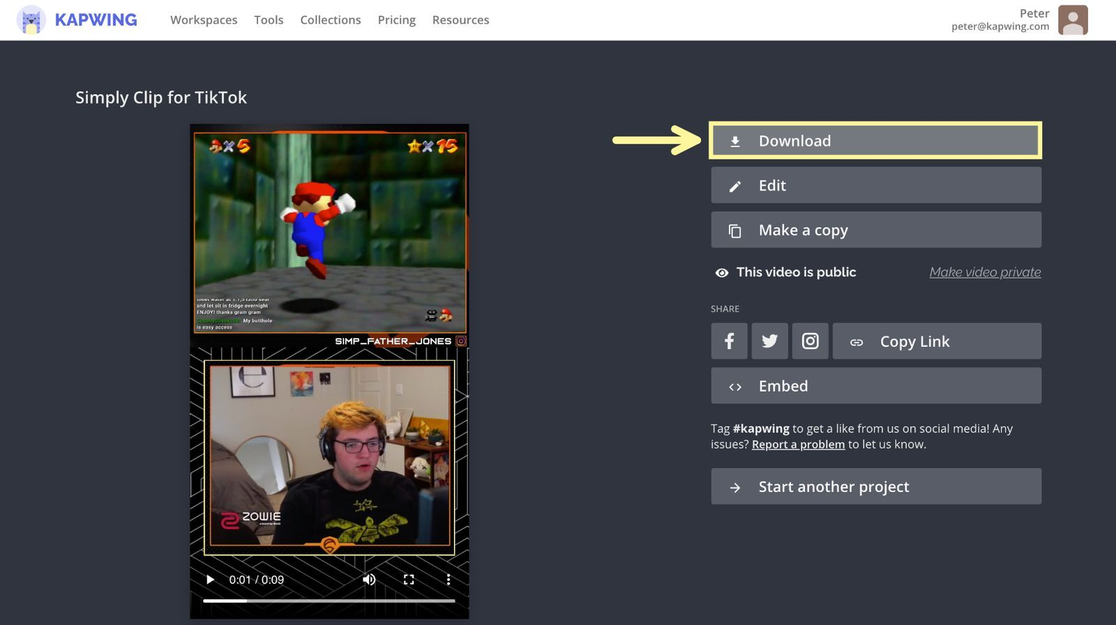 A screenshot of the Kapwing download page.