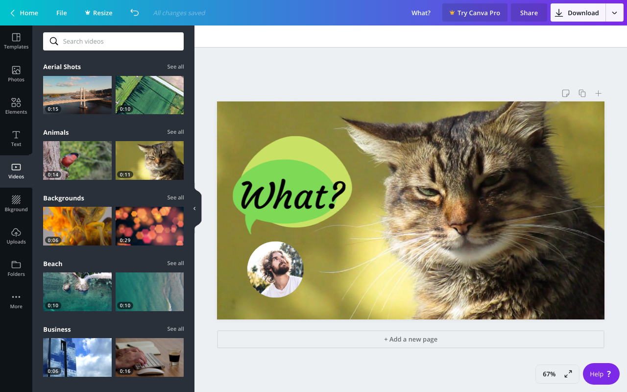 A screenshot of Canva's video editing user interface.
