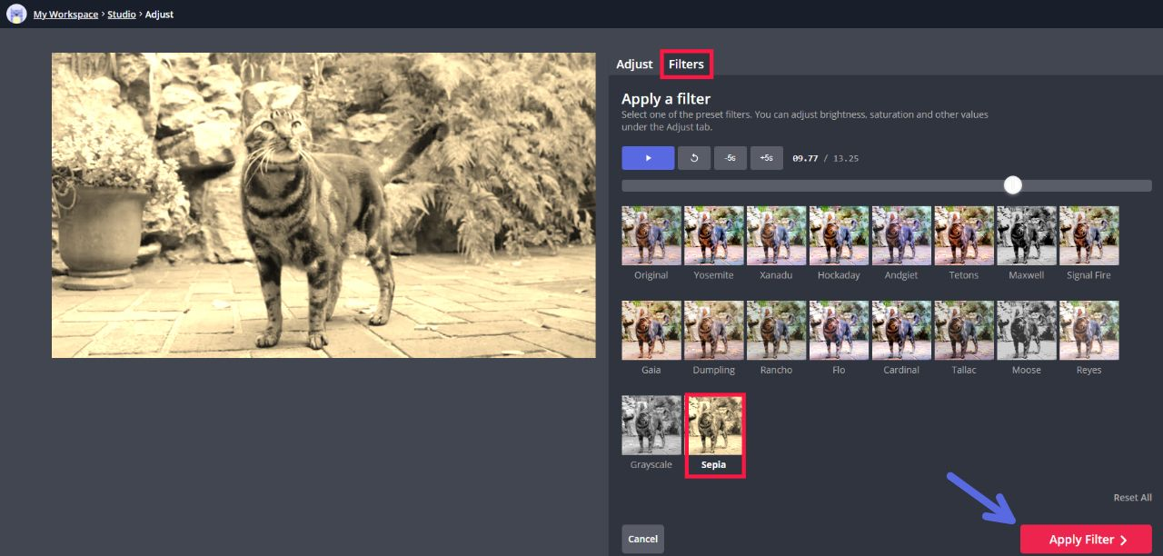 A screenshot showing how to add a sepia-tone filter in the Kapwing Editor